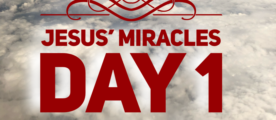 38 Days of Miracles: All the Libraries in the World