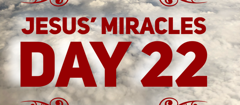 38 Days of Miracles: Even the Dogs Get Crumbs