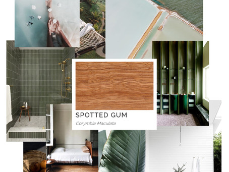 Timber Mood Boards: Spotted Gum