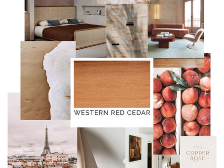 Timber Mood Boards: Western Red Cedar
