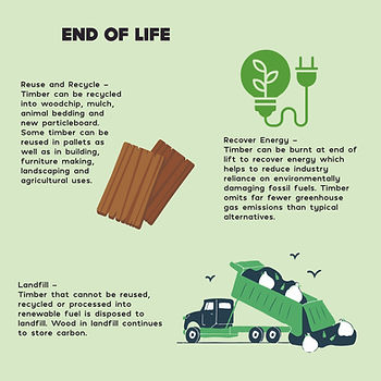 Tree Educational Diagram-05.jpg