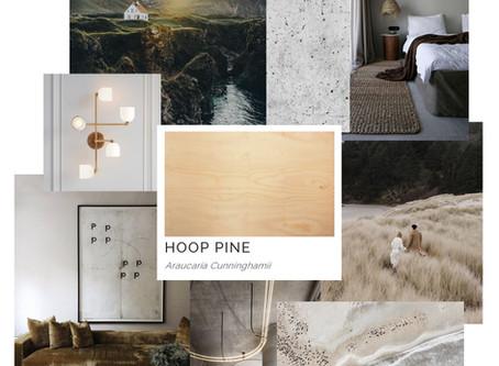 Timber Mood Boards: Hoop Pine