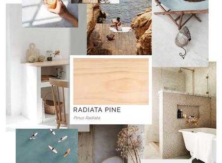 Timber Mood Boards: Radiata Pine