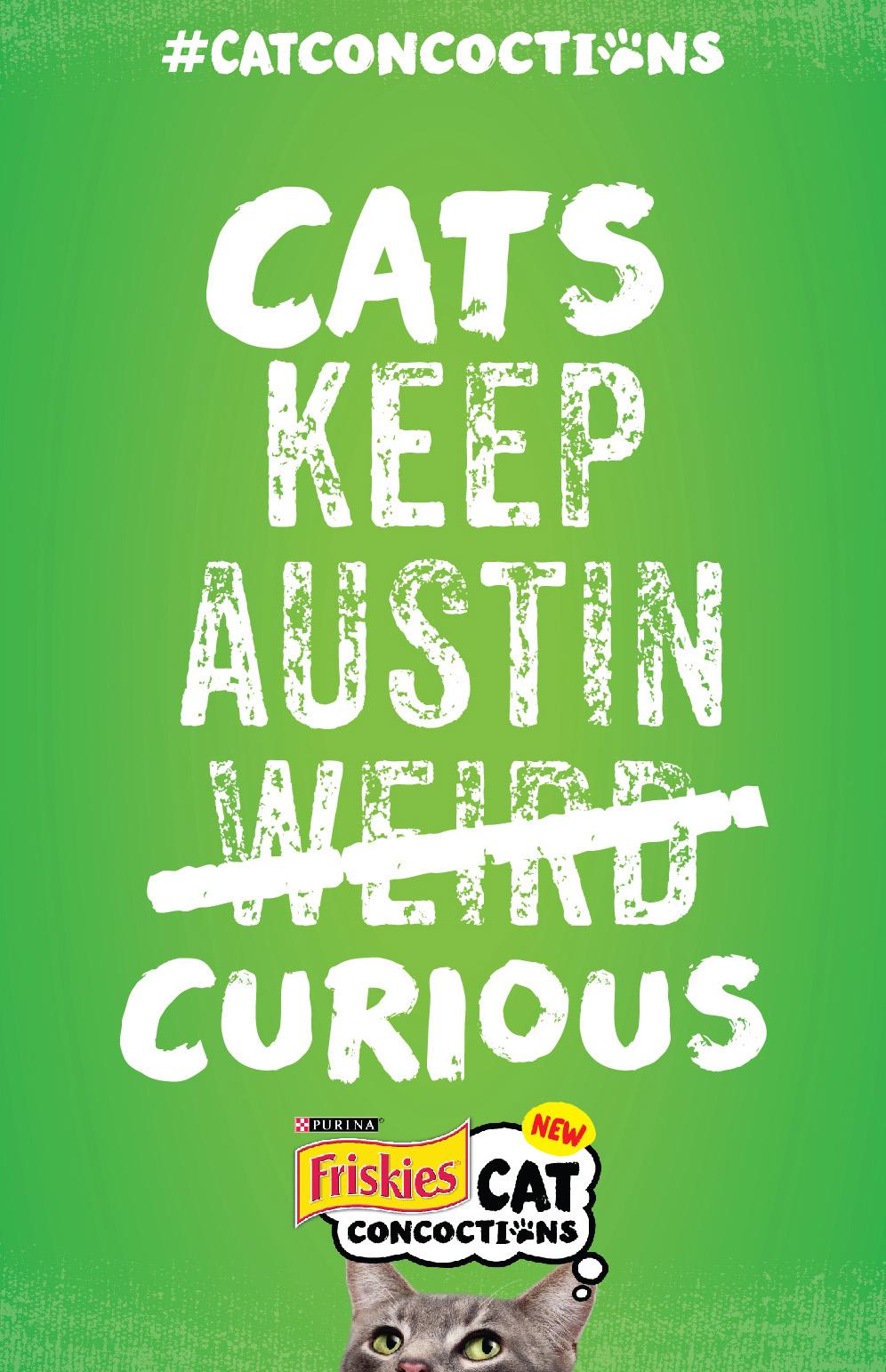 cats_keep_austin_curious-01