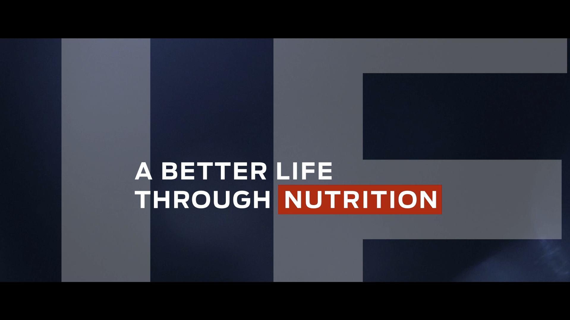 Introducing The Purina Institute