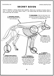 Wolf/Dog Skeleton Sections Page