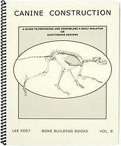 Canine Wolf/Dog Skeletons