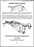 Sea Otter Skeletons Page