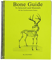 Bone Identification Guide