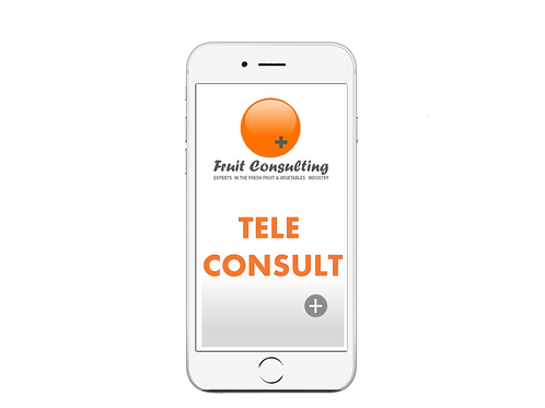 Tele Consuting