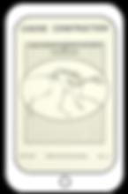 Wolf/Dog Skeletons Digital Book
