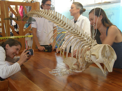 Peoples taking first pictures of the finished skeleton. Day twelve.