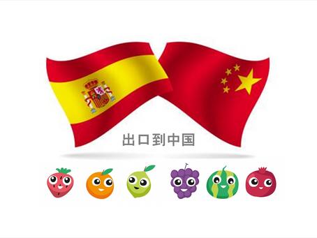 """""""西班牙企业在中国未能实现目标是心态问题"""""""