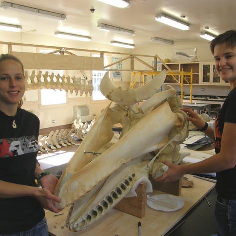 Ashley and Kara - the super skull team.