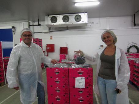Oliver Huesmann und Noelia Gascón besuchen Traubenplantage Vale da Rosa