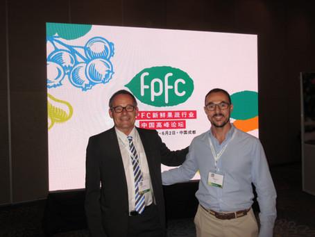 Las oportunidades de negocio con Frutas en Chengdu China.