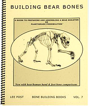 Bear Skeleton Book