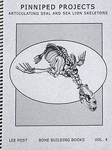 Sea Lion and Seal Skelton Book