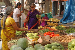 India Fruitconsulting