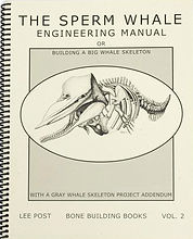 Sperm Whale Skeleton Book