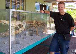 14-foot Saltwater Crocodile