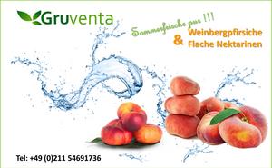 Gruventa Paraguayos präsentiert von Fruitconsulting