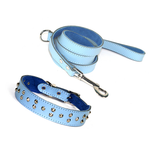 Dogue Blue Collar and Lead Set
