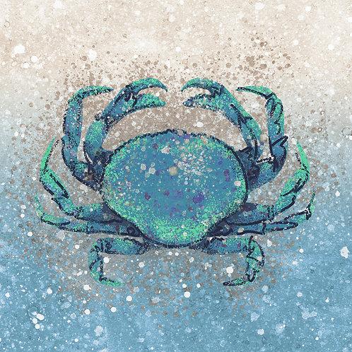 Blue Rock Crab