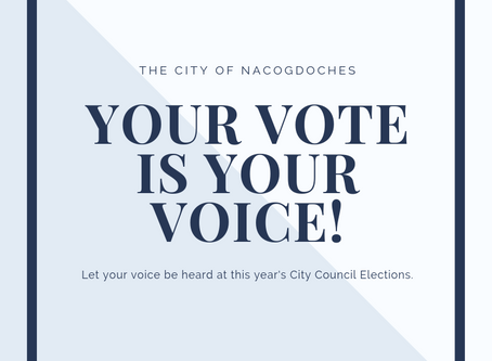 Importance of Upcoming City Council Elections