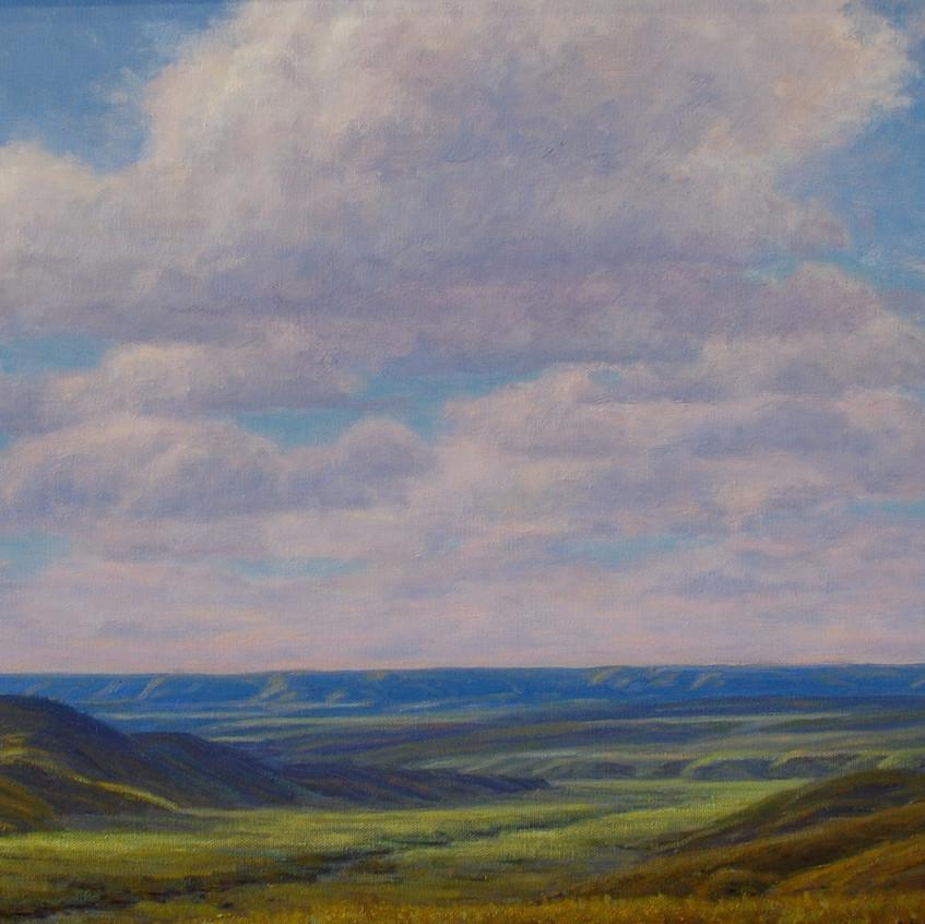Open Prairie (N.E. Montana)
