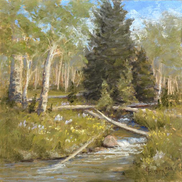 Hunter Creek Aspen