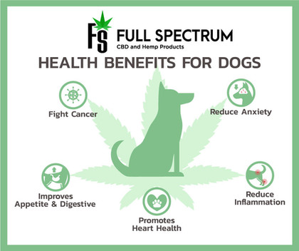 Dog-Benefits Ad