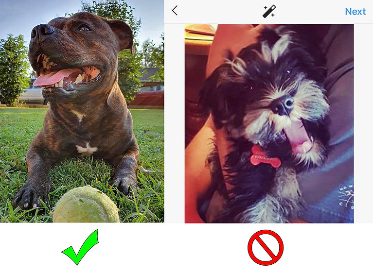 good vs bad 3.jpg