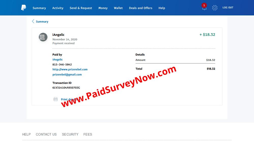 paidsurveynow.com
