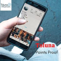 Toluna Survey Points Proof