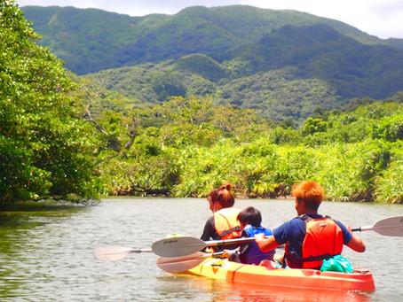 世界遺産のマングローブの森をカヌーで漕いでみよう🛶