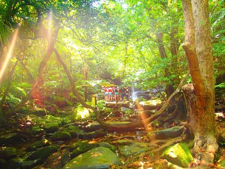 秘境の滝でエナジーチャージ✨西表島アクティビティツアー