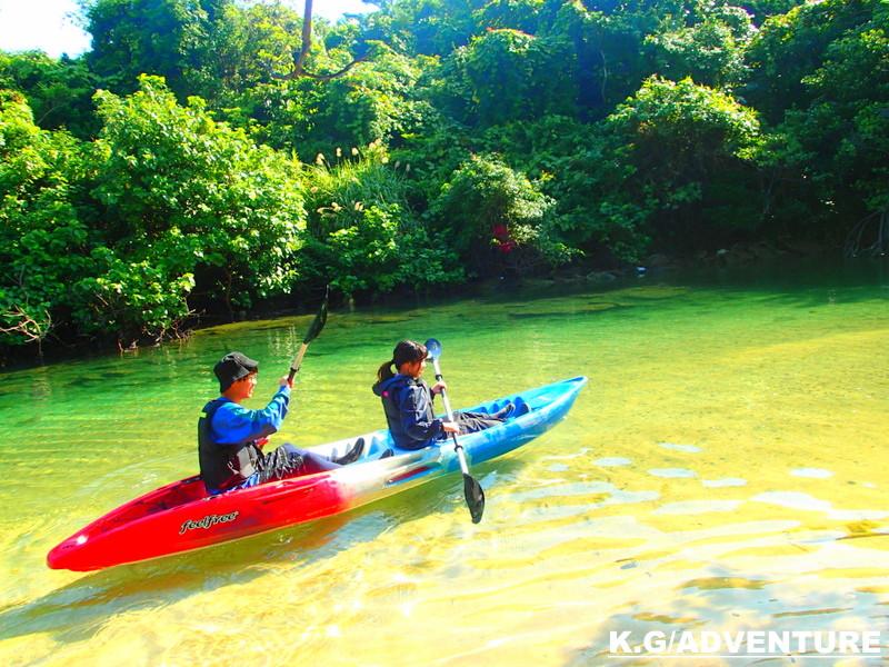 石垣島旅行で西表おすすめキャンペーン!西表ツアー人気の由布島観光とカヌー秘境パワースポット巡り、観光アクティビティツアーが一日で満喫できる!・西表島カヌー&人気観光スポット由布島で南国を満喫しよう。卒業旅行・学生旅行・女子旅行・家族旅行を楽しもう!