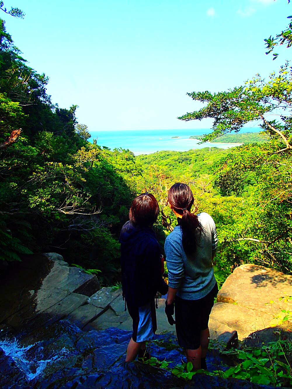 ジャングルの向こうにエメラルドブルーの海が見えます🌴 西表島で人気のアクティビティツアー体験 島旅で時間を贅沢に使おう〜 西表島 KEN GUIDE www.kenguide.info #西表島 #西表島旅行 #家族旅行 #女子旅 #トレッキング #sup #カヌー