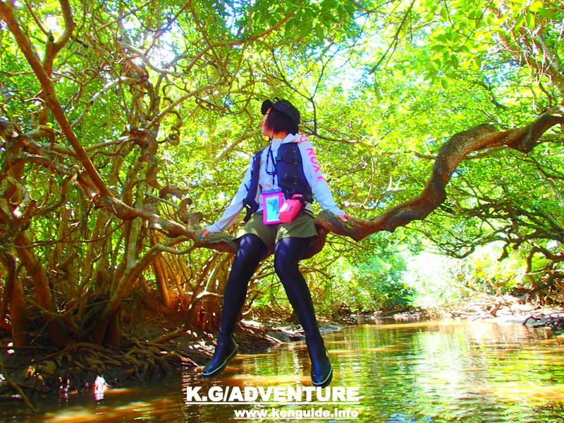沖縄、石垣島へ旅行に訪れたなら、少し足を伸ばして離島、西表島へ観光に訪れると秘境で人気のアクティビティツアー体験を、ケンガイドがおすすめするアドベンチャー体験で遊ぼう!