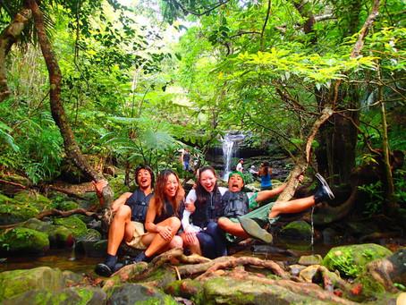 沖縄旅行・西表島「みんなでジャングル探検!」 SUP&キャニオニング