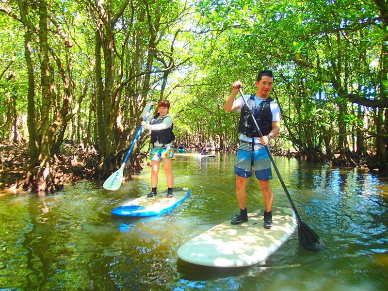 愛犬(ペット)と一緒に石垣島・西表島で遊ぼう!西表島ケンガイドがおすすめする人気のアクティビティツアー・観光スポットをご紹介、マングローブをカヌーや人気の SUP・スタンドアップパドルボードで漕いだり、ジャングルをトレッキングで秘境の滝で遊ぼう。アドベンチャーボートで行くパナリ島シュノーケルなど愛犬と一緒に西表島ツアーを楽しもう!石垣島や各離島からの日帰り参加もできます。