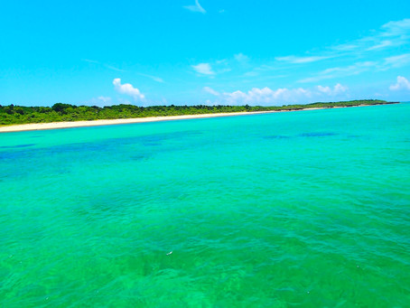 ようこそ楽園パナリ島へ〜🌴西表島シュノーケリングツアー