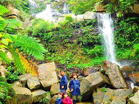 西表島トレッキングツアーでゲータの滝行ってみよう🌴