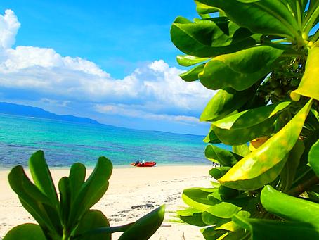 西表島で人気のパナリ島シュノーケル〜島旅で時間を贅沢に使おう〜🌴