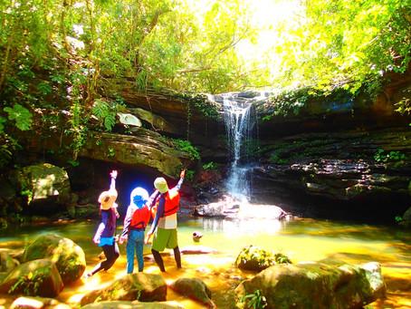 秘境の滝巡り・西表島アクティビティツアー