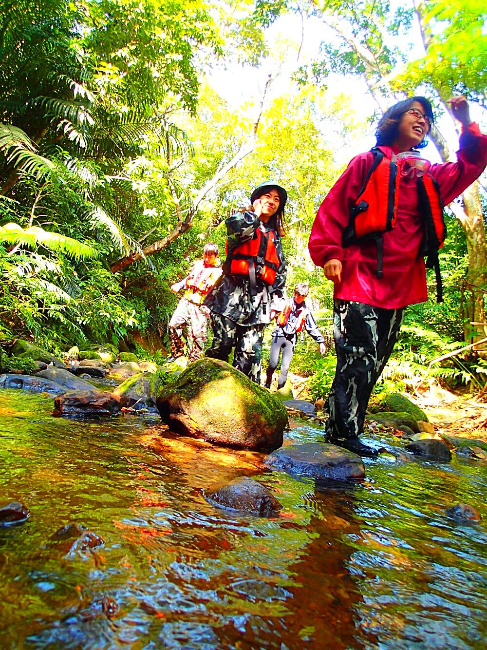 イリオモテヤマネコの住む原始の森を歩いて見ました🐾 . ........................................ 八重山旅行・西表島で冒険の旅へ出かけよう ! 人気のアドベンチャーツアー割引きキャンペーン実施中! 詳しくはホームページをご覧ください。  西表島 KEN GUIDE www.kenguide.info . ............................................ #西表島ケンガイド #沖縄旅行 #離島 #八重山 #西表島 #西表島旅行 #家族旅行 #女子旅 #卒業旅行 #旅行好きな人と繋がりたい #トレッキングツアー #sup #カヌー体験 . ........................................ 離島に住みたい方、応援しています。 ネイチャーガイド、アシスト募集中です。 詳しくはケンガイドHP求人情報をご覧下さい。