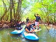 西表ツアーおすすめ人気の秘境パワースポット巡り・SUPでマングローブを漕いでジャングル探検トレッキングで秘境の滝巡り、午後からケイビングで神秘の鍾乳洞探検。大自然のエナジーを体感しよう。石垣島から日帰り参加もOK!です。