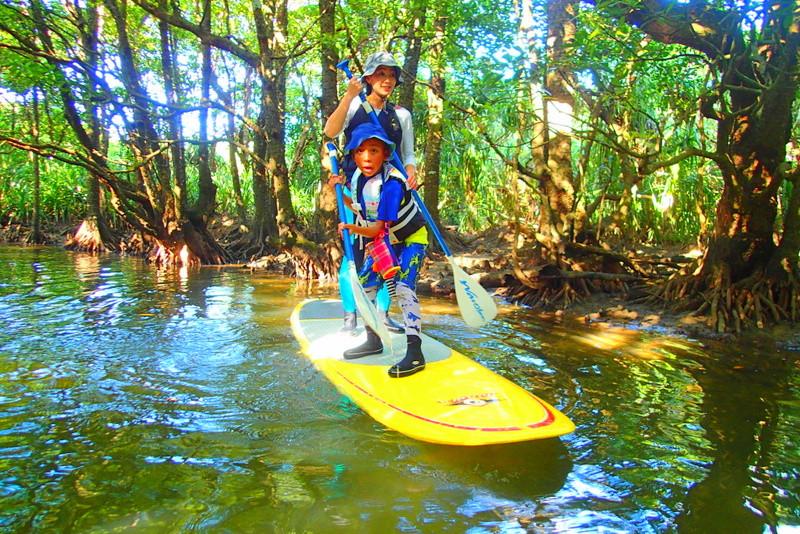 西表・石垣島旅行で西表おすすめツアー人気のケンガイドがおすすめする家族旅行、人気の西表SUPでマングローブ&ジャングル探検トレッキング滝巡り!
