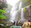 西表ツアーおすすめ家族旅行・人気の西表カヌーでマングローブを漕いでジャングル探検トレッキングで秘境のパワースポット滝巡り、午後からケイビングで神秘の鍾乳洞探検。大自然のエナジーを体感しよう。石垣島から日帰り参加もOK!です。